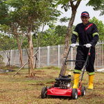 Grounds maintenance and landscaping